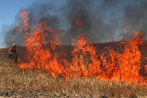 Grass-fire-300x200.jpg