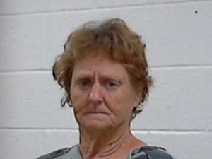 Karen Bayless - A/C Theft - Wichita Falls