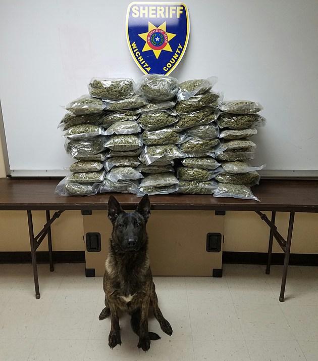 Marijuana Bust Wichita County Hwy 287